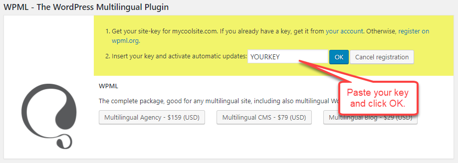 Paste the site-key and click OK to complete the registration.