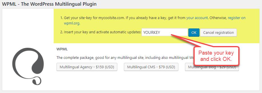 Collez la clé de site et cliquez sur OK pour terminer l'enregistrement.