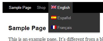 Sélecteur de langue dans le menu du site