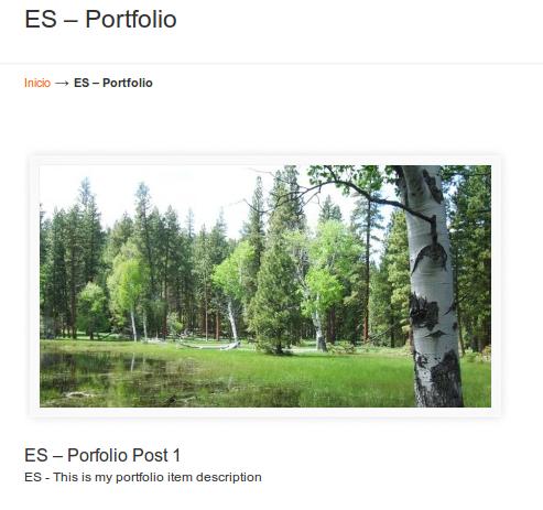 Translated U-Design portfolio