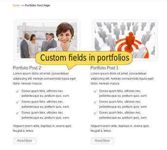 Portfolio page with custom fields