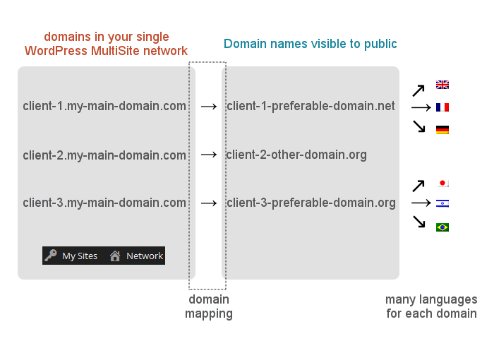 WP MultiSite, WPML and domain mapping