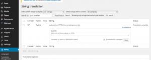 String in WPML->String Transaltion