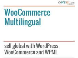 WoocCommerce Multillingual