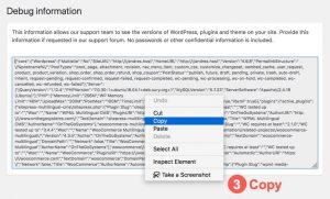 Select and copy debug info