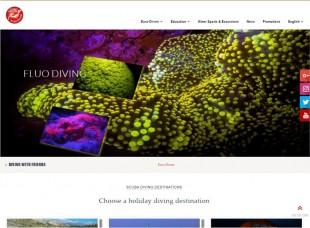 euro-divers.com