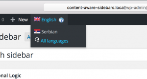 sidebar translation and conditional logic for secondary language