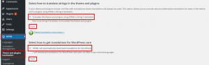 Theme and plugins localization-1