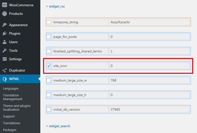 Translating Customizer and Theme Options - WPML