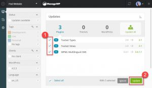 Selecting And Updating WPML And Other Plugins From the ManageWP Dashboard