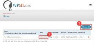 Adding A Site To Your WPML Account