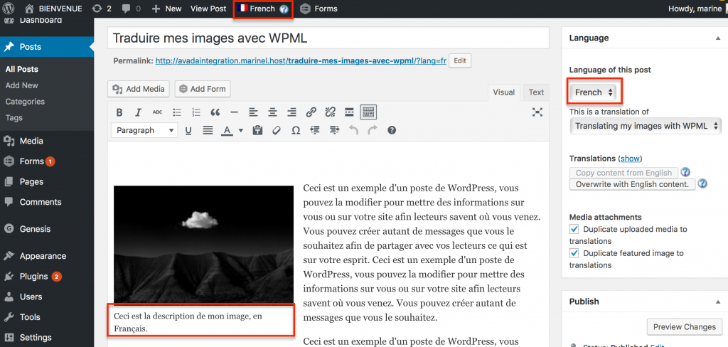 translate Genesis images with WPML