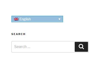 Intercambiador de idiomas de barra lateral luego de implementar la solución.