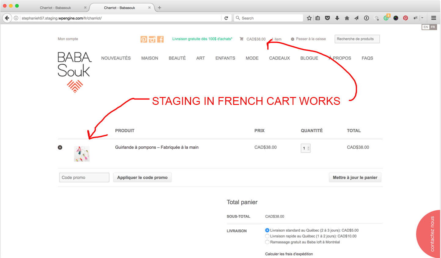 Live Cart Shows Empty In French Jpg Staging Works