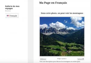Using WPML to translate NextGEN Gallery