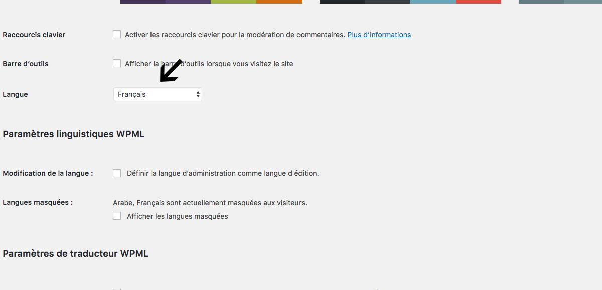 Problème de traduction du tableau de bord - WPML