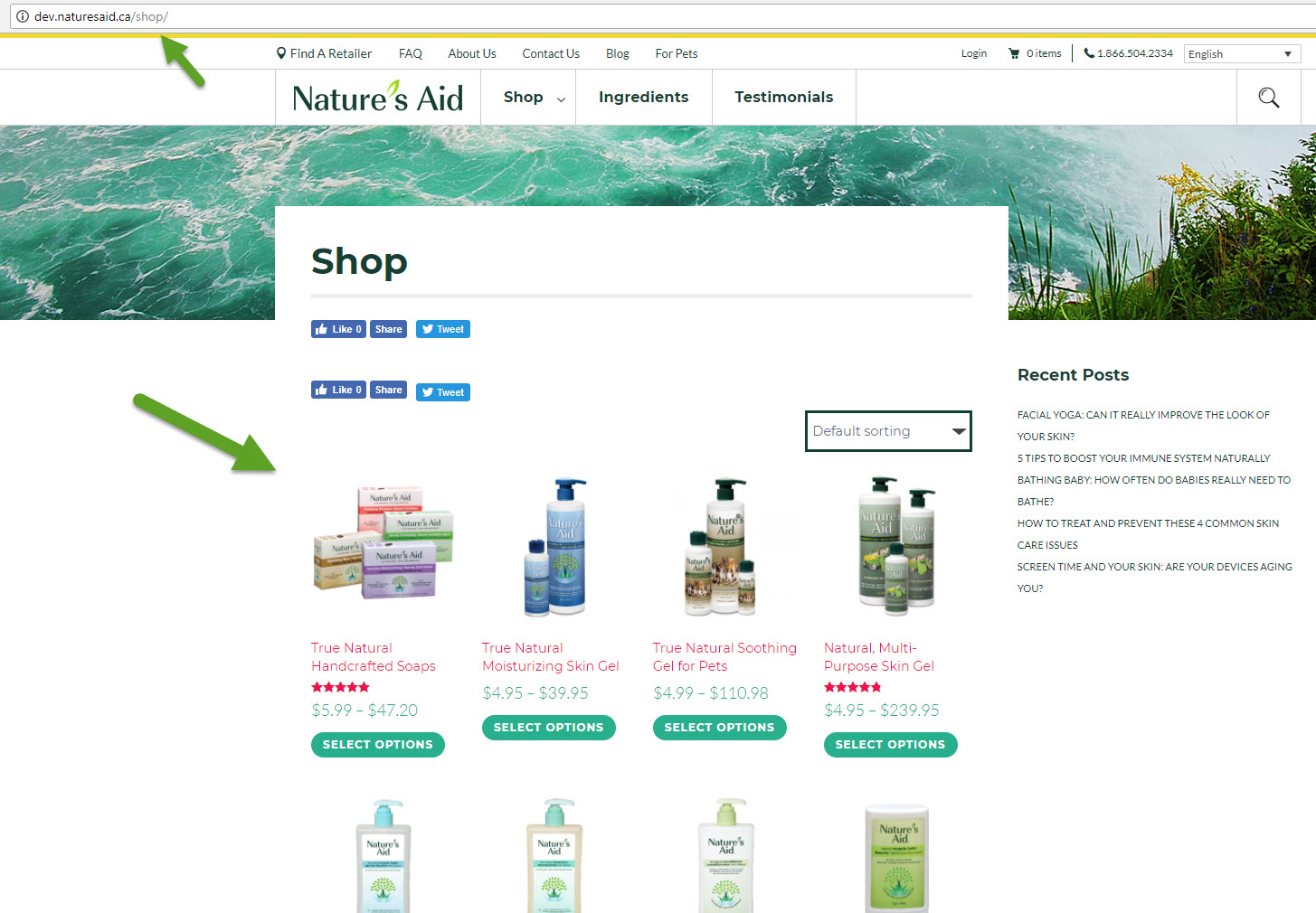 After update shop is using index.php template - WPML