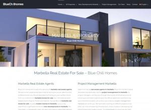 Blue Chili Homes