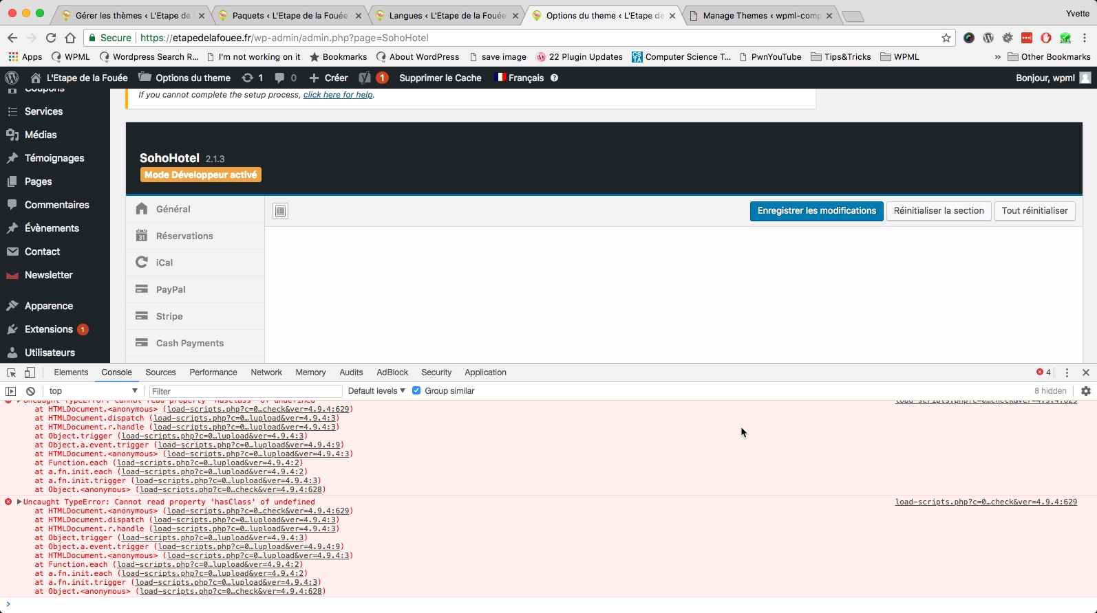 JavascriptErrorsFromTheme.png