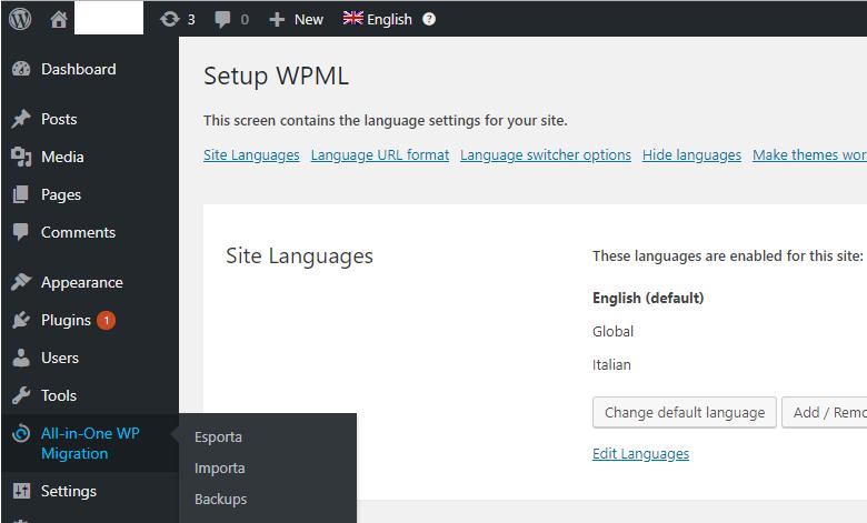 redirect in wordpress theme page error