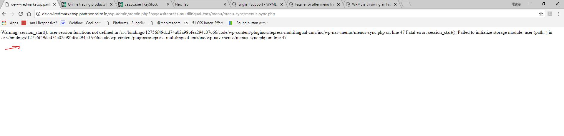wpml error.jpg