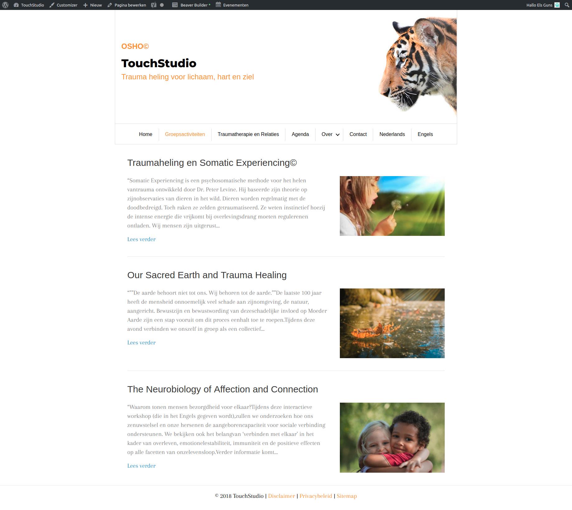 Groepsactiviteiten TouchStudio.png