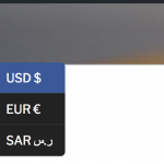 2-currency-switcher.png