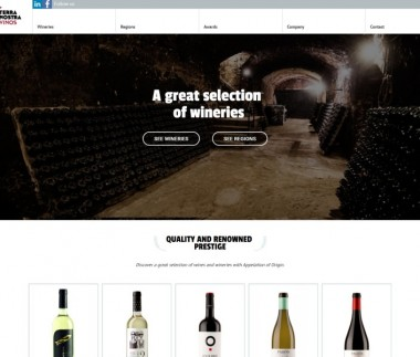 Terra Nostra Vinos – A great selection of wineries