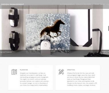 Visual Design Management