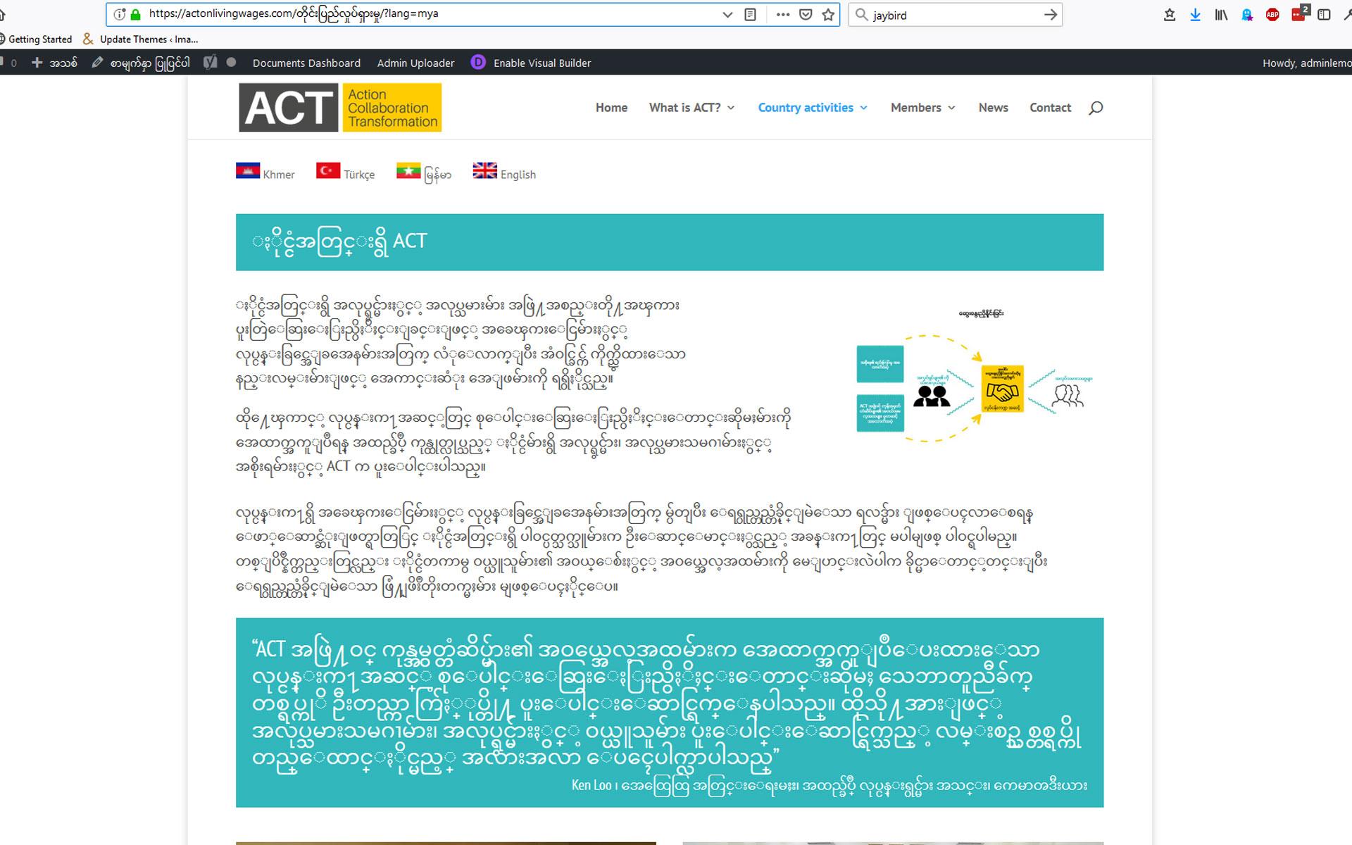 Burmese Web Jpg