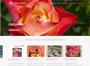 Meilland International