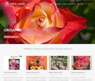 Meilland International