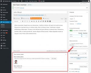 """Campos personalizados ao editar um tipo de post personalizado de """"Membros da equipe"""" com o editor clássico"""
