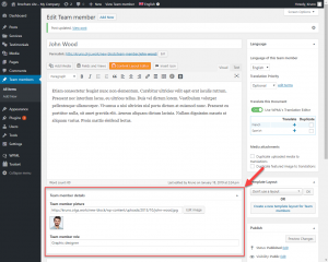 "Custom fields when editing a ""Team members"" custom post type when using Classic editor"