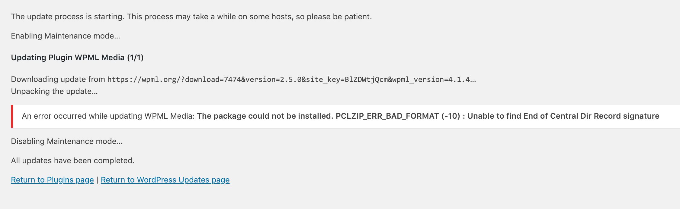 WPML Updates 2.png