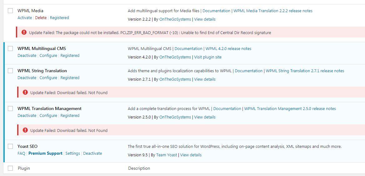 WPML_update_errors.jpg