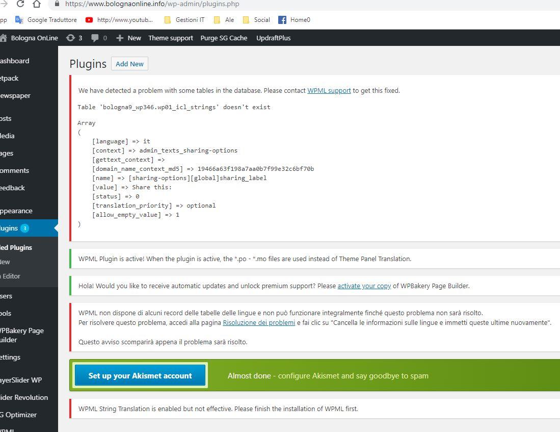 Cattura problema WPML-Newspaper.JPG