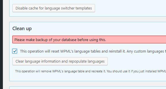 Cattura WPML 05.04.19.JPG