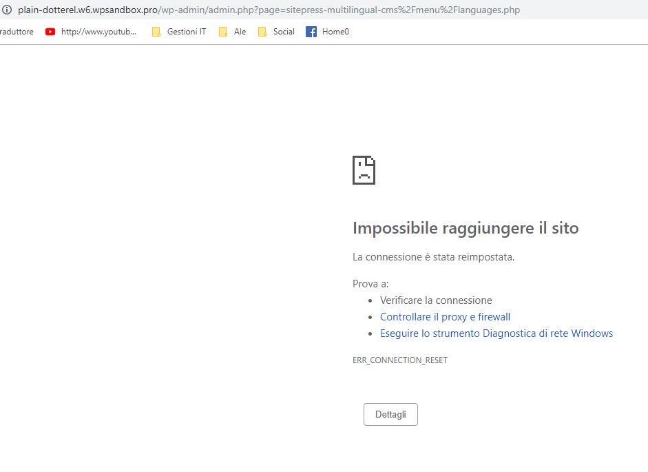 Cattura errore test site Newspaper-WPML appena scelta la lingua originaria in WPML.JPG