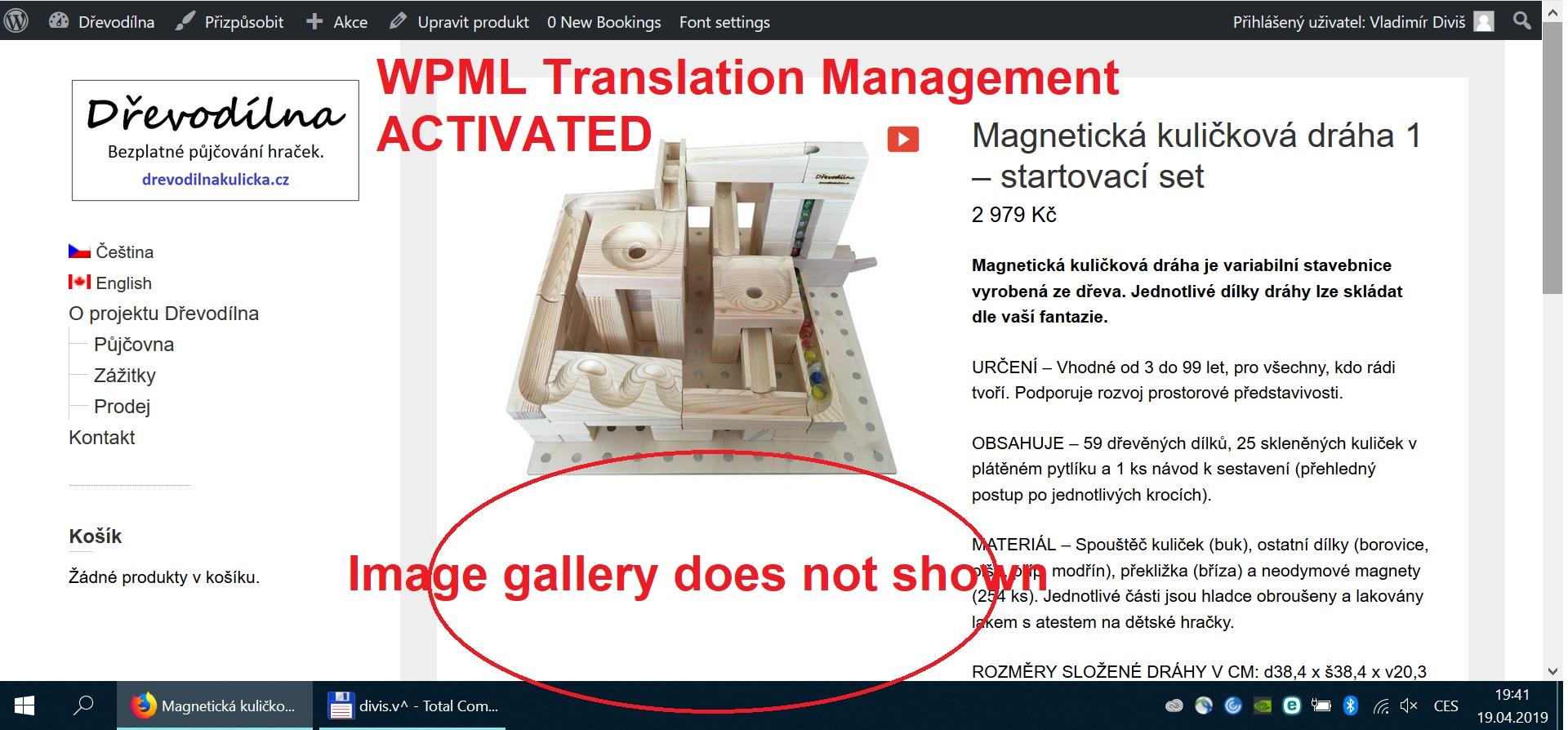 WPML TM_active.jpg