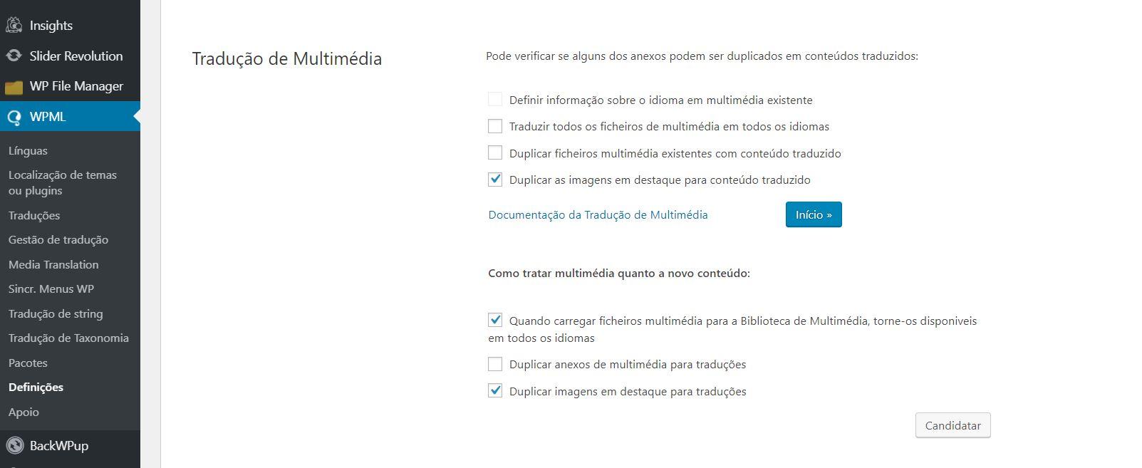 WPML multimedia.JPG