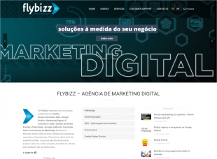 Flybizz – Digital Marketing Agency