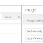 WPML Link settings.PNG