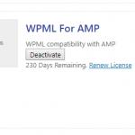 AMP-WPML.png
