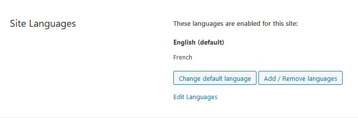 Screenshot_2019-11-26 Languages ‹ PLG CONCEPT — WordPress.png