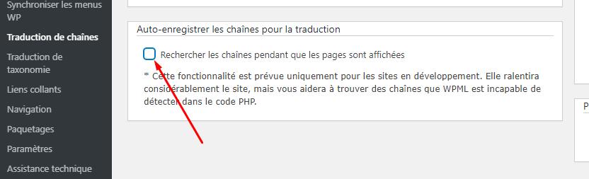auto-enregistrement-des-chaines-pour-la-traduction.png