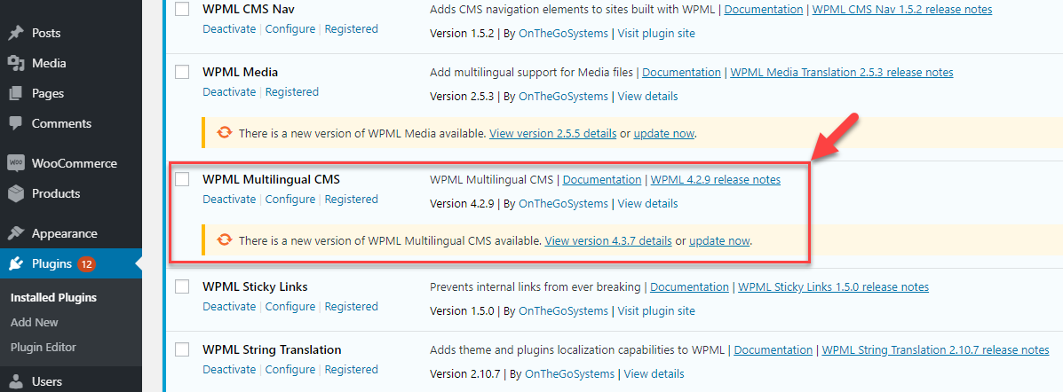 An outdated version of the WPML plugin listed on the Plugins page
