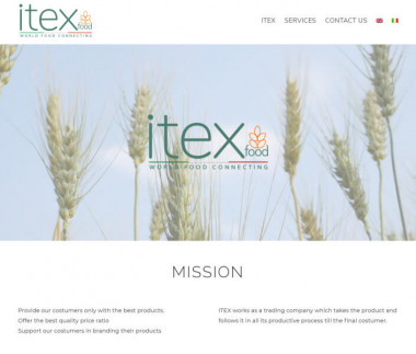 Itex Company