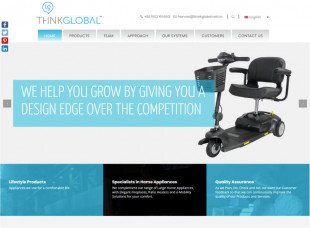 Think Global Corporate website