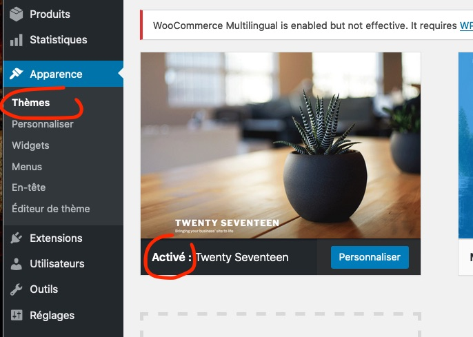 WooCommerce Multilingual is enabled but not effective. It requires WI.jpg